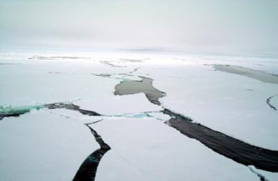北極  撮影ポイント