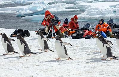 南極 最短で南極へ!