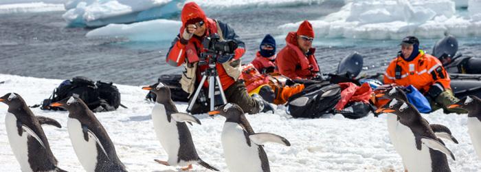 南極半島&サウスシェットランド諸島 11・12日間