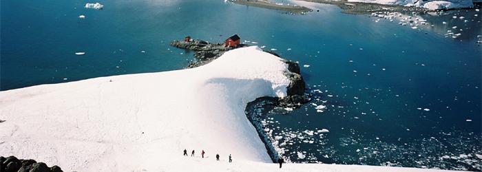 フライ&クルーズ:南極エクスプレス(�U)南極半島、サウスジョージア島&フォークランド諸島17日間