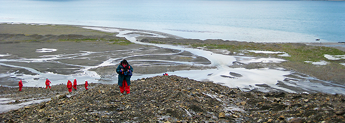 フォークランド(マルビナス)諸島、サウスジョージア&南極半島(南極圏横断)23日間