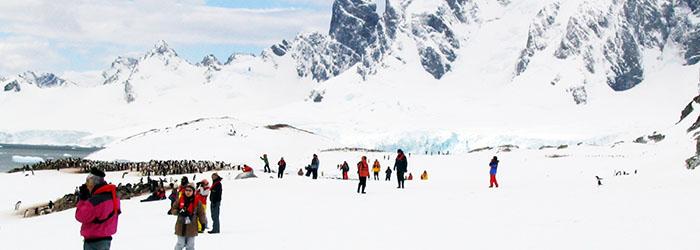 フライ&クルーズ:南極半島周遊(南極圏横断)12日間