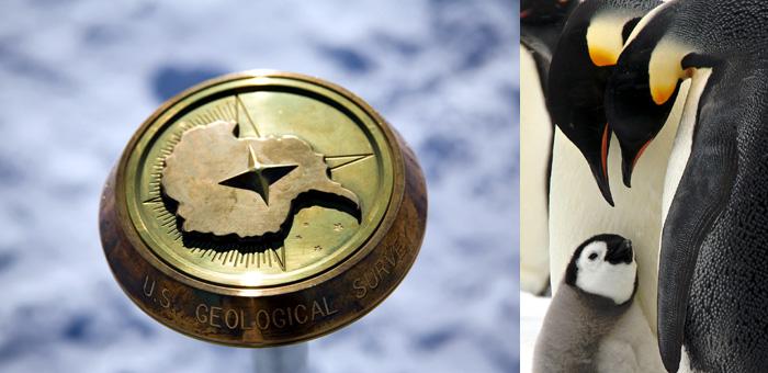 皇帝ペンギンと南極点フライト9日間
