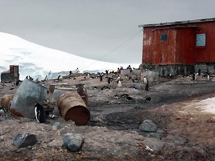 山部一実さん南極フライ&クルーズ