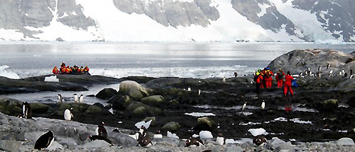 南極フライ&クルーズ(�V)サウスシェットランド諸島6・7日間